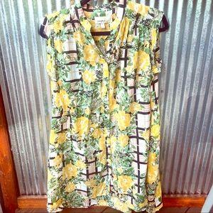 Anthropologie porridge arboretum floral dress ca